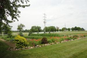 Amish Garden 3