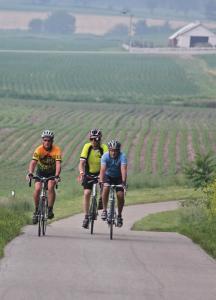 Pumpkinvine Trail -- Old railroad tracks converted to miles of beautiful bike/walking trails